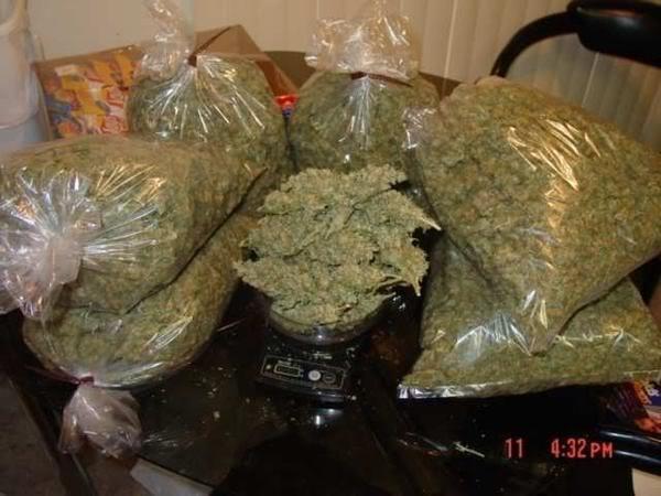 Legalització de la marihuana a New Jersei i Califòrnia (4/5)
